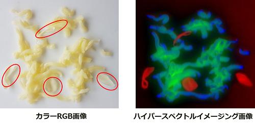 食品異物混入検査のハイパースペクトルイメージング画像例